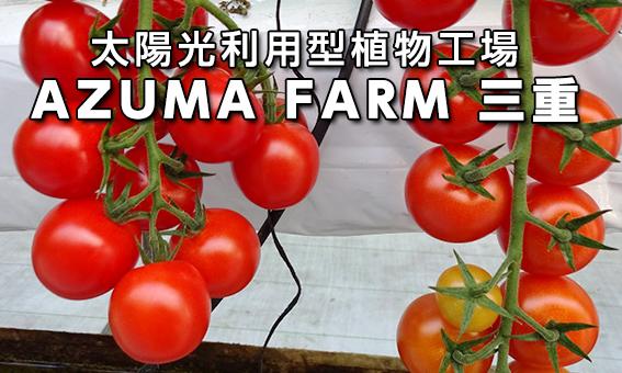 太陽光利用型植物工場 AZUMA FARM三重